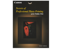 Secrets-of-Professional-Printing-Book